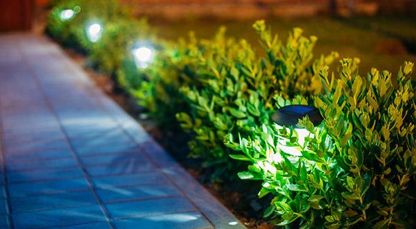 Eugene Accent Lighting