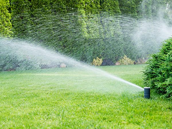 eugene irrigation contractor
